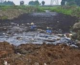 土壤污染检测