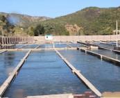 渔业养殖水质检测