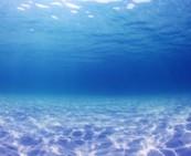 海洋环境检测介绍